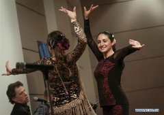 25th Int'l Flamenco Festival held in Vancouver