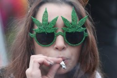 Canada to track economic impact of cannabis ahead of legalization