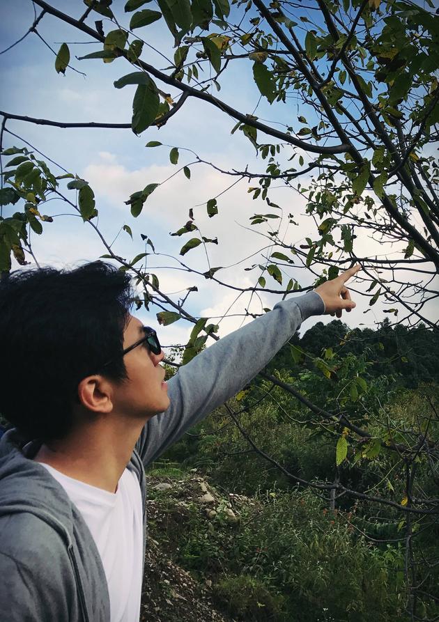李健置身大自然