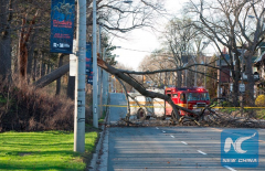 2 dead as wind storm hits Canada