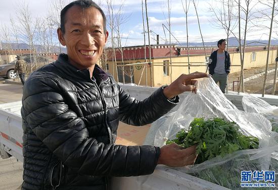 菜商胡进涛展示刚摘下来的茼蒿。新华网记者 张宸摄