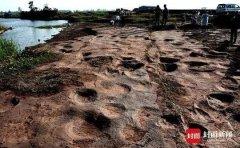 中国发现群居恐爪