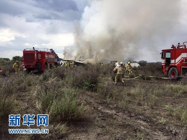 7月31日,在墨西哥杜兰戈州,救援人员在飞机坠落现场工作。新华社发(墨西哥杜兰戈州民防部门供图)