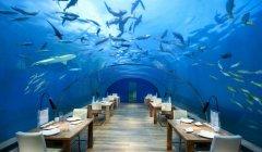 马尔代夫建全球首家海底