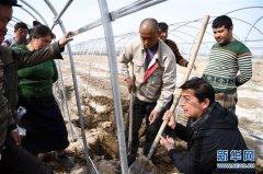 新疆高校服务乡村助推脱