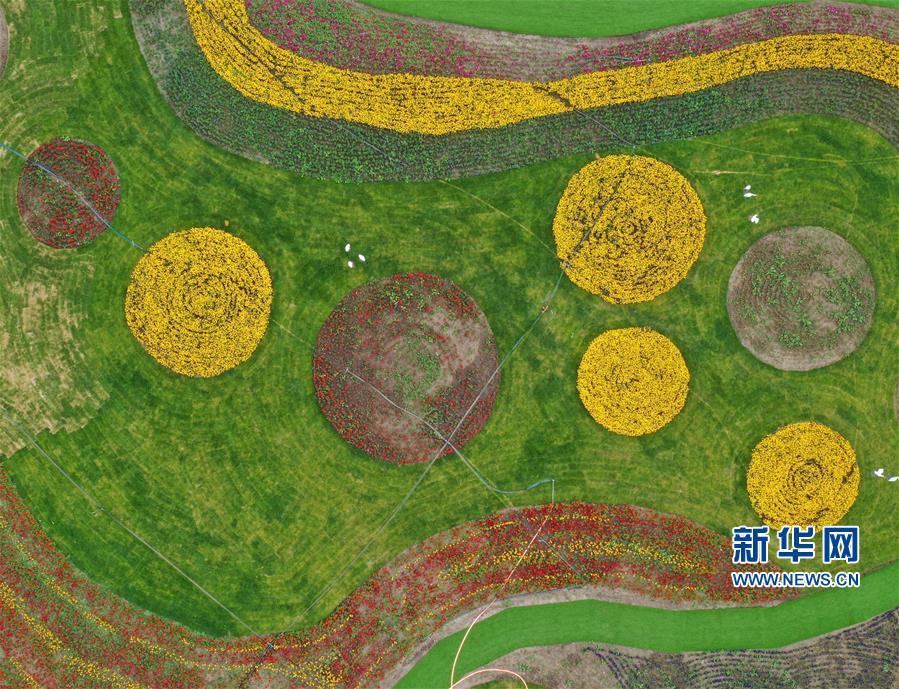 (经济)(1)张北坝上打造田园综合体