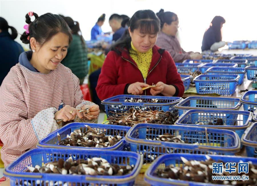 (新华全媒头条·自信中国·70年启示录·图文互动)(6)初心不改为人民——从壮阔70年看中国情怀