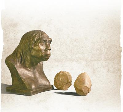 Scientists mark 90th anniversary of Peking Man's discovery