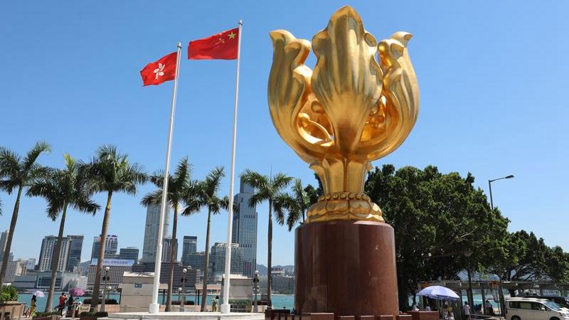 Wang Yi: China appreciates France's objectivity on Hong Kong issues
