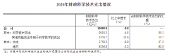 2020年中国研究与试验发展